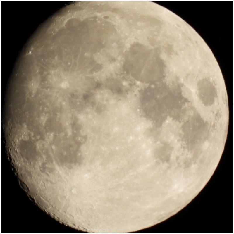 Luna llena en la Dehesa San Francisco