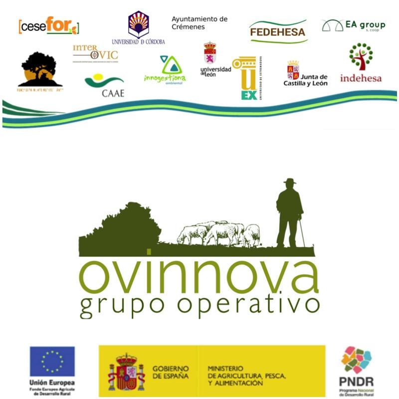 Fundación Monte Mediterráneo es socio líder del Grupo Operativo OVINNOVA