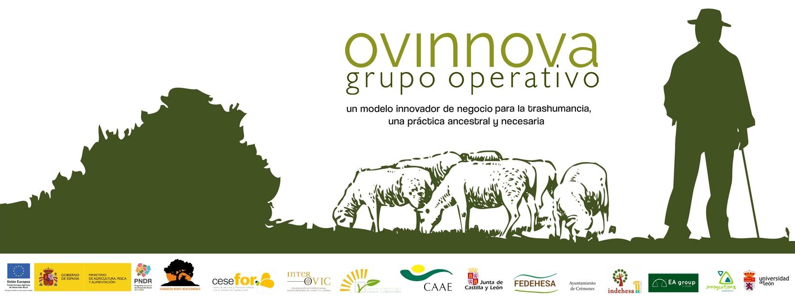 Presentación del Grupo Operativo OVINNOVA a ganaderos en Torrecampo (Córdoba)
